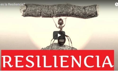 ¿Eres una Persona con Resiliencia o No?